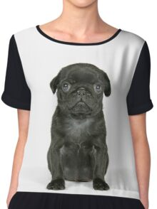 Cute Black Pug puppy Chiffon Top