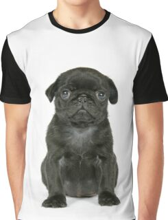 Cute Black Pug puppy Graphic T-Shirt
