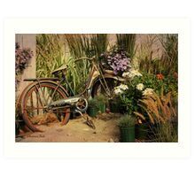 An Old Bicycle ~ Move It or Use It? Art Print
