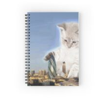 cat plays with gherkin Spiral Notebook