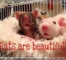Rats Are Beautiful by anitalmccormick