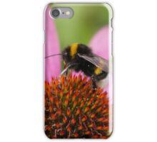 Bee on an Echinacea iPhone Case/Skin
