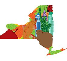 State of New York Official Map Symbols Illustration Photographic Print