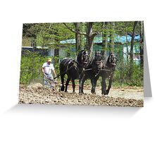 Putting a Hand to the Plow (And a Few Horses) Greeting Card