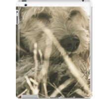 Cute Puppy iPad Case/Skin