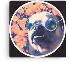 The Grooviest Pug on Earth Canvas Print