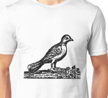 Pedestrian Pigeon.   Unisex T-Shirt