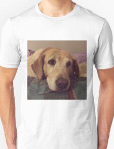 Gracie the Lab Retriever 2 Unisex T-Shirt