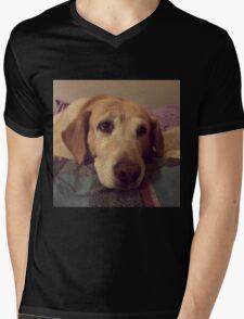 Gracie the Lab Retriever 2 Mens V-Neck T-Shirt