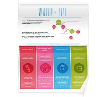 Water is Life Infographic Poster Poster