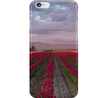Red Rows iPhone Case/Skin