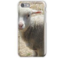 Curious Lamb at Ross iPhone Case/Skin