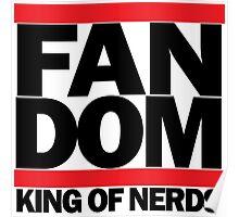 FAN DOM - King of Nerds Poster