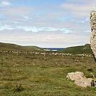 The Burragarth Stone, Unst 2 by WatscapePhoto