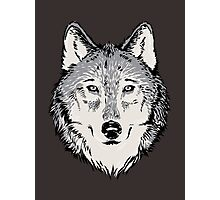 Wolf Photographic Print