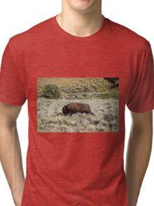 Majestic Bison Roaming Alone Tri-blend T-Shirt