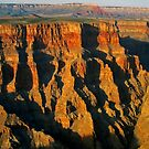 Glorious Grand Canyon by Terri~Lynn Bealle