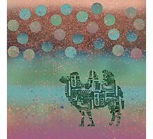 camel on the moon Photographic Print