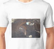 Double Arch in Arches National Park, Utah. Unisex T-Shirt