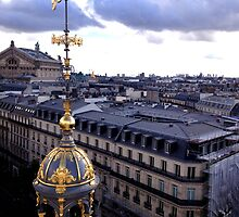 Rooftops of Paris by tiffsho