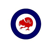 Takahe Air Force Roundel Photographic Print