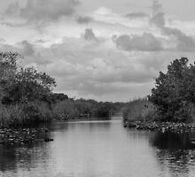 The Everglades by NathanGordon