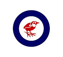 Rockwren Air Force Roundel Photographic Print