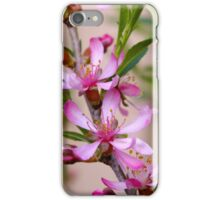 Pink Blossoms on a Bush iPhone Case/Skin