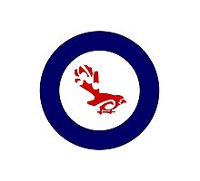 Fantail Air Force Roundel Photographic Print