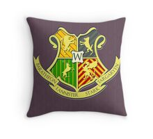 A School of Ice and Fire Throw Pillow