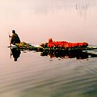 On Dal Lake, Srinigar by indiafrank