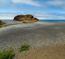 Black Sand Beach On The Lost Coast by James Eddy