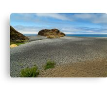 Black Sand Beach On The Lost Coast Canvas Print