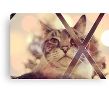 Cat outside Canvas Print