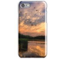 Coming in to Roost iPhone Case/Skin