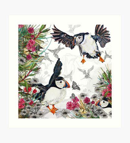 Drawing Paradise - Puffins Art Print
