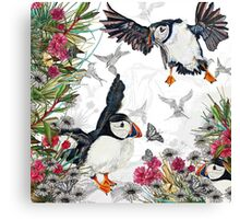 Drawing Paradise - Puffins Canvas Print
