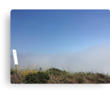 Clouded Grass Canvas Print