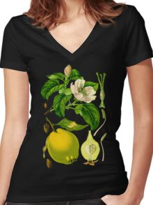 Quince Women's Fitted V-Neck T-Shirt