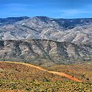 Beautiful Desert by Brian Gaynor