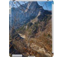 Alpine landscape iPad Case/Skin