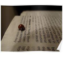 book bug Poster