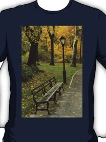 Fall In New York (Central Park) T-Shirt
