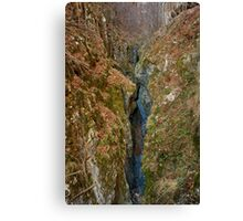 Gorge and a river in the mountains Canvas Print