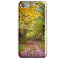 Autumnal scene in the woods iPhone Case/Skin