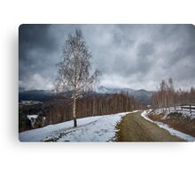Road in the mountains Metal Print