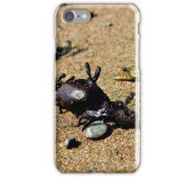 Sea Dragon iPhone Case/Skin