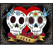 Love Skulls Photographic Print