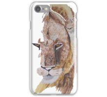 Lion stare iPhone Case/Skin