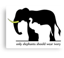 Only Elephants Should Wear Ivory (White Background) Canvas Print